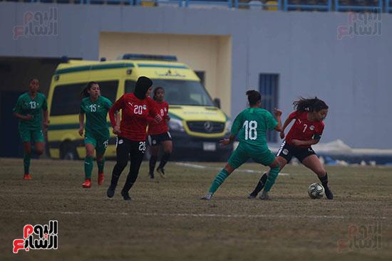 Egypt and Algeria (40)