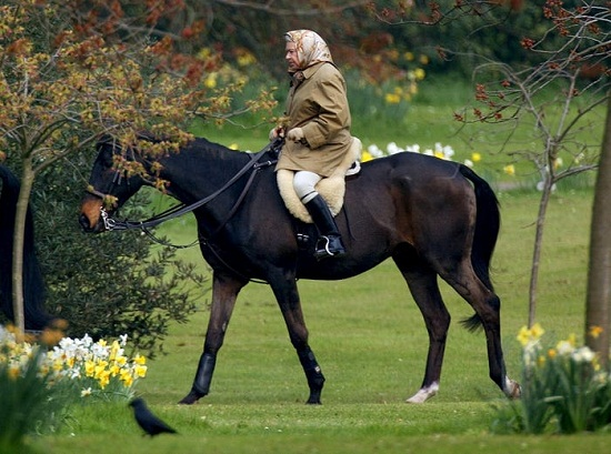 The queen practices equestrian sport