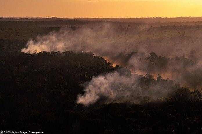 Brazilian forest fires in Brazil