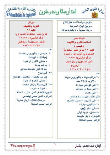 نشرة التوظيف (7)
