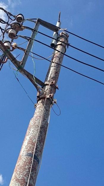 صحافة المواطن ، سرقة الكهرباء ، محافظة الدقهلية ، اسلاك كهربائية ، مركز بلقاس،  (4)