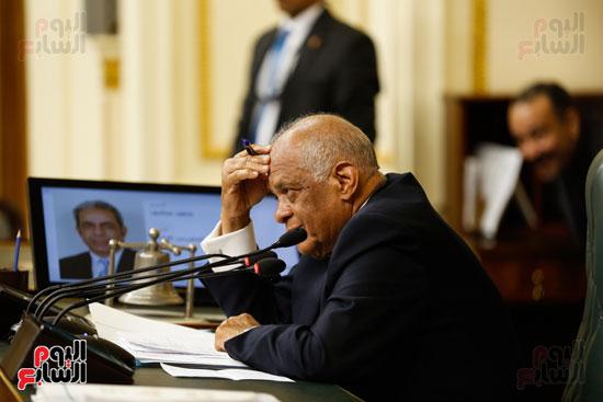 الجلسة العاملة لمجلس النواب (1)