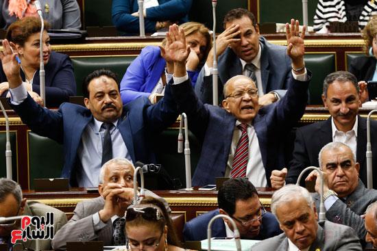 الجلسة العاملة لمجلس النواب (3)