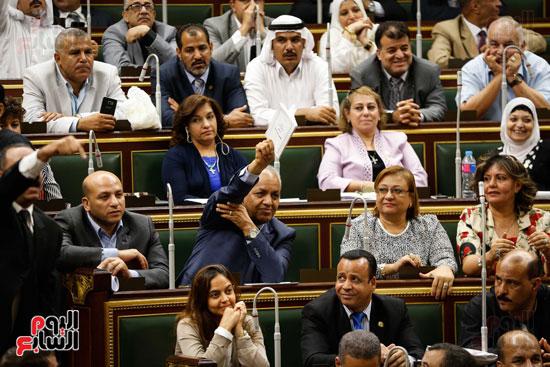 الجلسة العاملة لمجلس النواب (6)