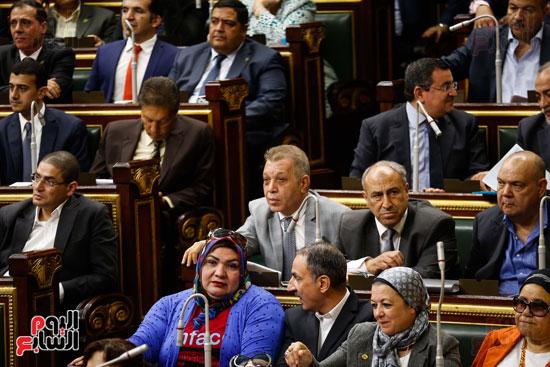 الجلسة العاملة لمجلس النواب (16)