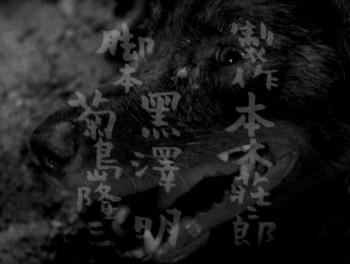 Stray Dog (1949) download