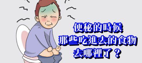 便秘的時候那些食物都去哪裡了?-台灣養生網