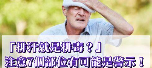 「流汗就是排毒?」注意7個部位也可能是警示!-台灣養生網