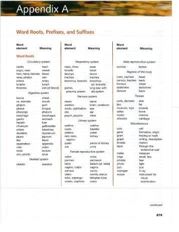 Writing Words Prefixes Worksheet