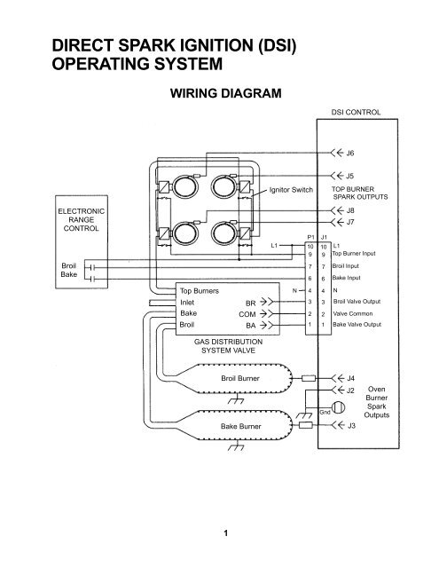 DIRECT SPARK IGNITION (DSI) OPERATING SYSTEM