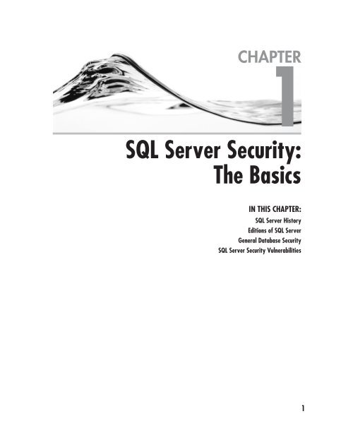 SQL Server Security: The Basics
