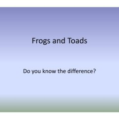 Frog And Toad Venn Diagram Excretory System Worksheet Frogs Toads The Maryland Zoo In Baltimore