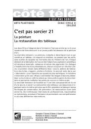 C Est Pas Sorcier La Prehistoire : sorcier, prehistoire, C'est, Sorcier, Pupitre.org