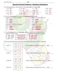 Printables. Genetics Problems Worksheet Answer Key. Mywcct ...
