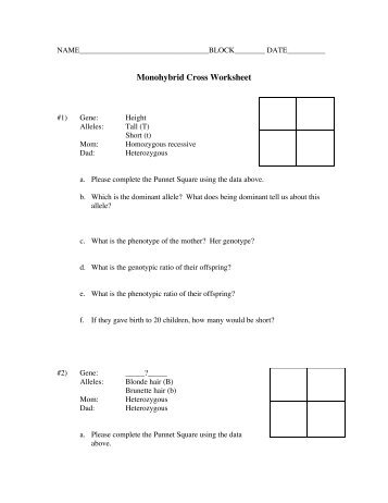 Printables. Monohybrid Cross Worksheet. Mywcct Thousands