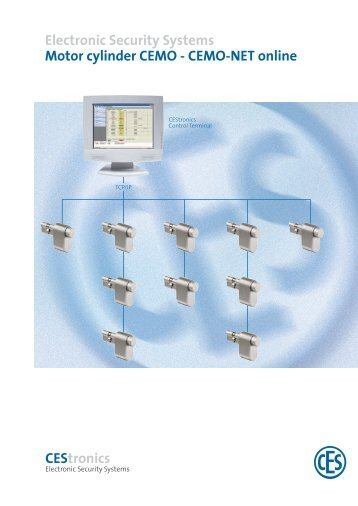 Electronic Security Systems