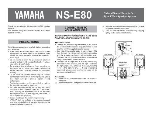 NS-E80 Natural Sound Bass-Reflex Type Effect Speaker