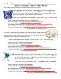 Natural Selection Worksheet. Worksheets. Ratchasima ...