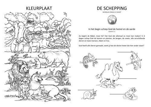 KLEURPLAAT DE SCHEPPING