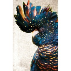 Indian Living Room Painting Ideas Country Themed Furniture Art Illusions Black Cockatoo Side Grunge Printed Wall ...