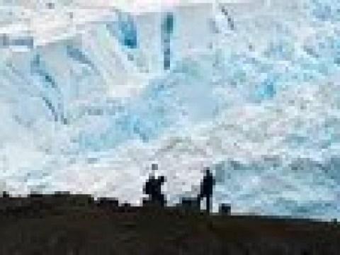 Coronavirus weltweit: Coronavirus auch in der Antarktis nachgewiesen
