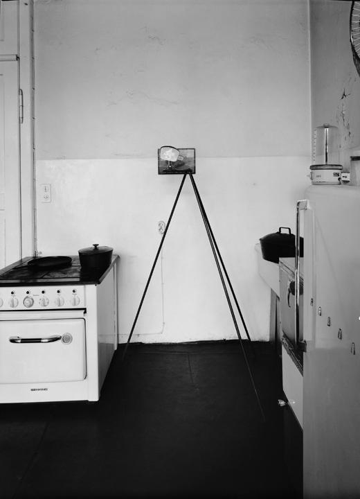 Joseph Beuys Beuys will be Beuys  ZEITmagazin
