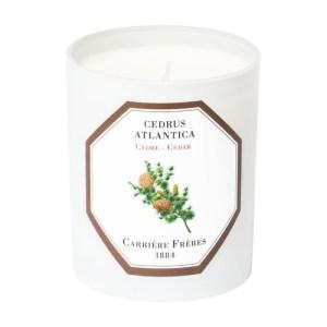 Scented Candle Cedar - Cedrus Atlantica 185 g