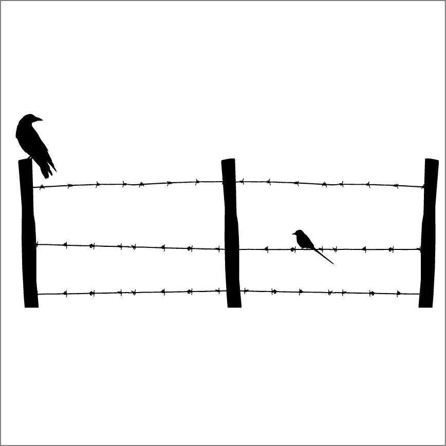 Large Barb Wire Fence with Birds Wall Decal 46 by
