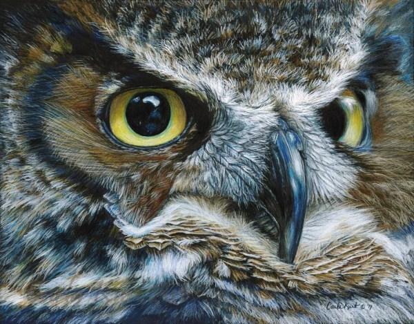 Owl Art Print Carla Kurt Bird 11 X 14