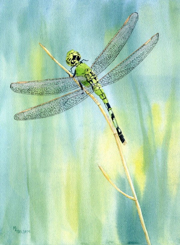 Green Dragonfly Giclee Print Watercolor