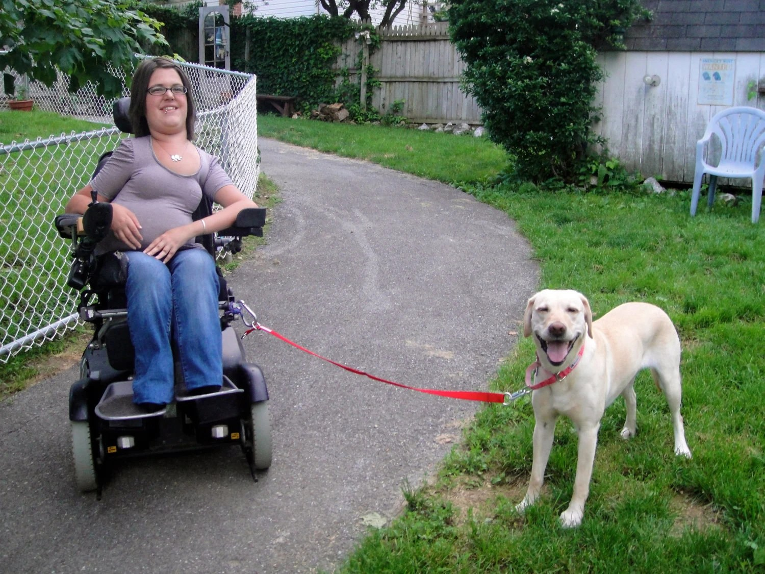 wheel chairs for dogs dining room table chair cushions partner link a wheelchair leash