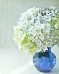 Hydrangea Flower Photography floral bouquet cobalt by ...