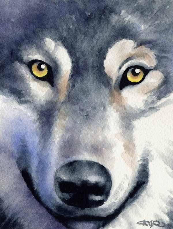 Watercolor Wolves Paintings