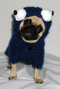 Cookie Lover Monster Halloween Dog Costume by mytinydog on