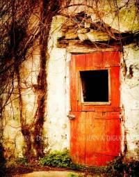 rustic red barn door | WINDOWS AND DOORS | Pinterest