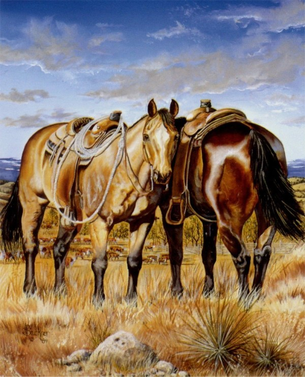 Horse Western Cowboy Oil Paintings