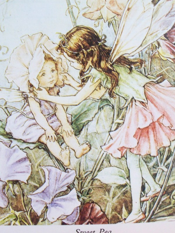 Vintage Blossom Fairy Illustrations Peachychicboutique