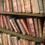 Bookshelf Dumpling In A Hanky