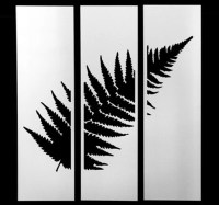 Items similar to Stainless Steel Silver Fern Wall Art on Etsy