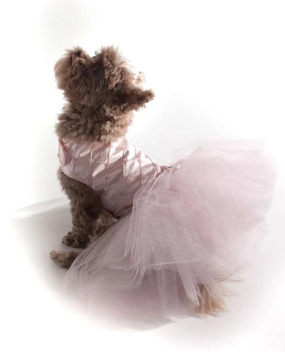 Ballerina Dog Dress