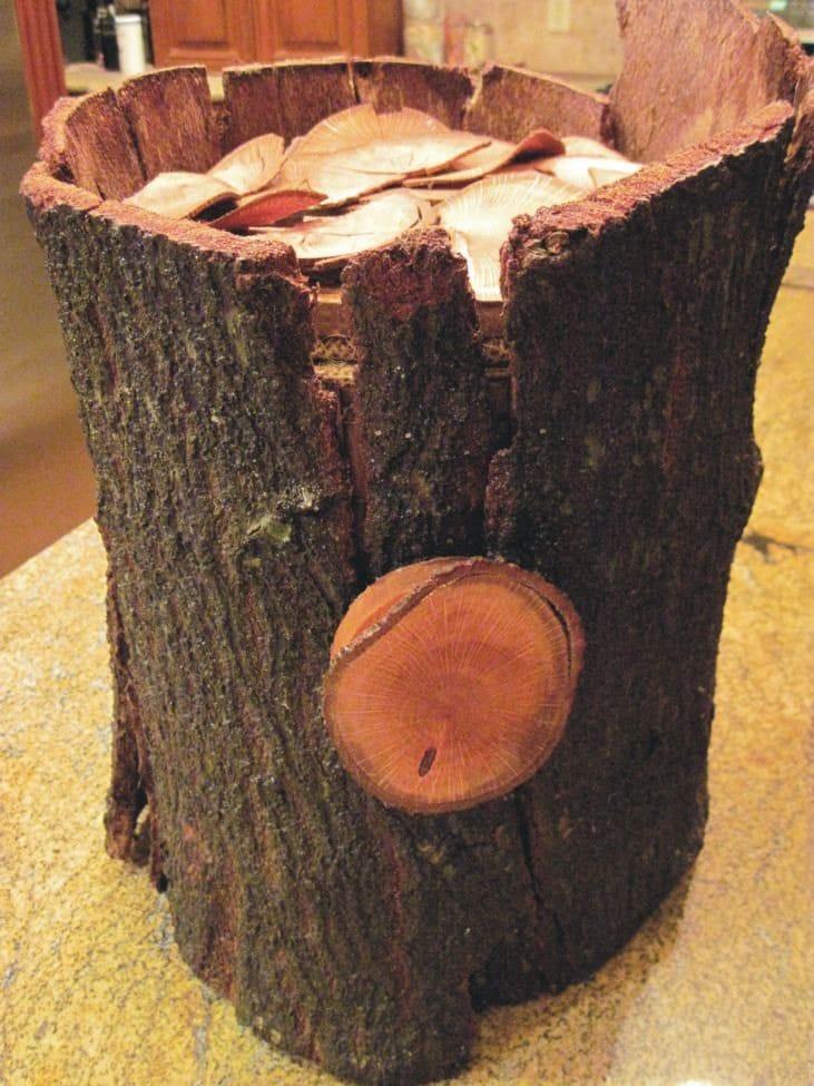 Tree Stump Wedding Card Envelope Box Card holder