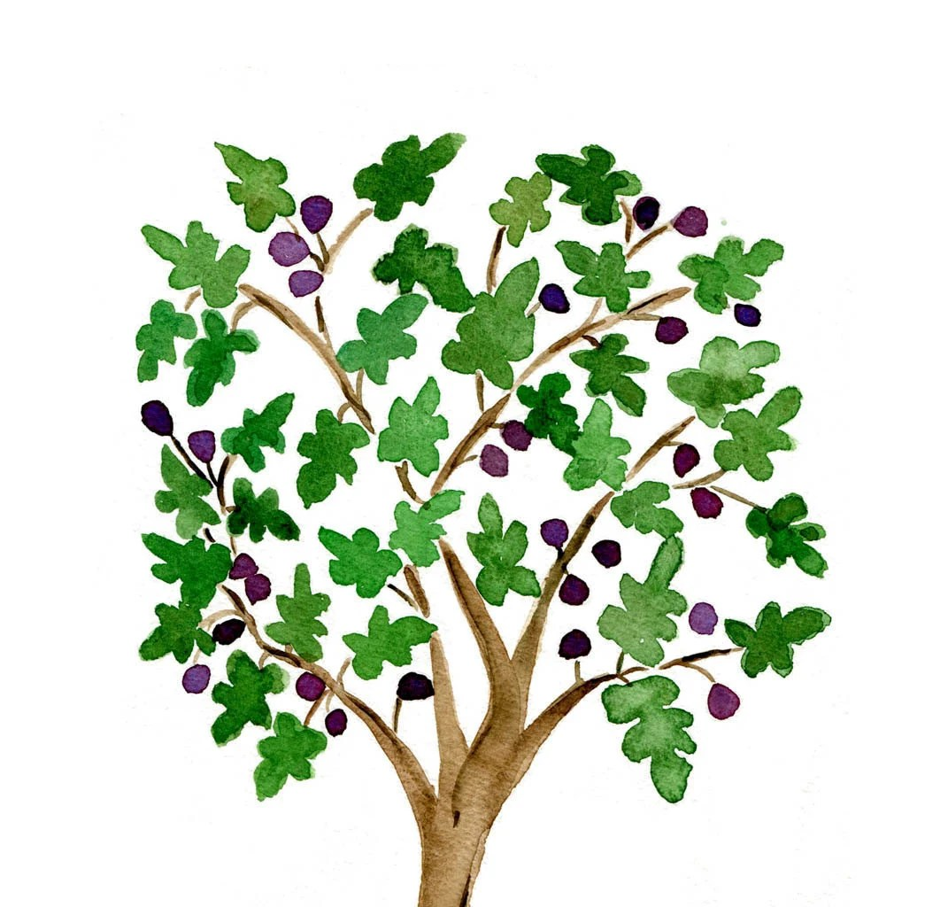Trees Bible List