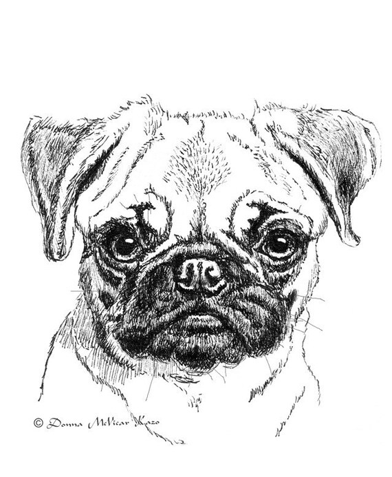 Items similar to Pug Puppy Ink Drawing Embellished