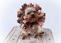 Lion Dog Costume Pet Halloween Costume Rush Order Size