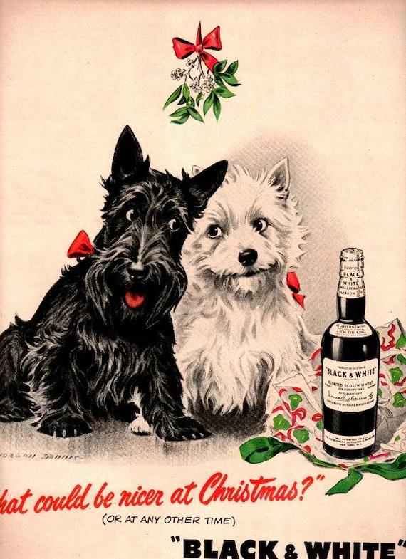 Vintage Scottish Terrier Puppies Dogs 1946 Advertisement