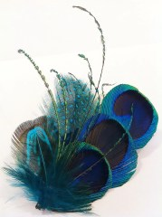 peacock feather hair clip boutonniere