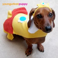 PRINCESS DAISY NINTENDO Costume for Dogs by YoungUrbanPuppy