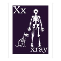 Children's Wall Art / Nursery Decor X is for Xray by ...