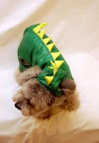 Godzilla costume - Lookup BeforeBuying