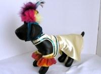 Carmen Miranda Dog Costume Small